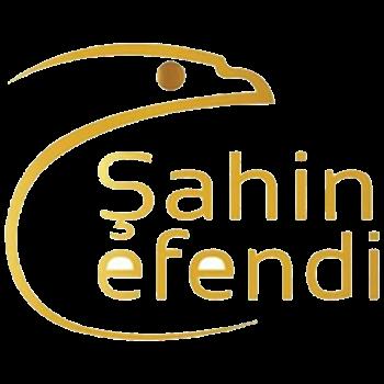 Picture for manufacturer Şahin Efendi