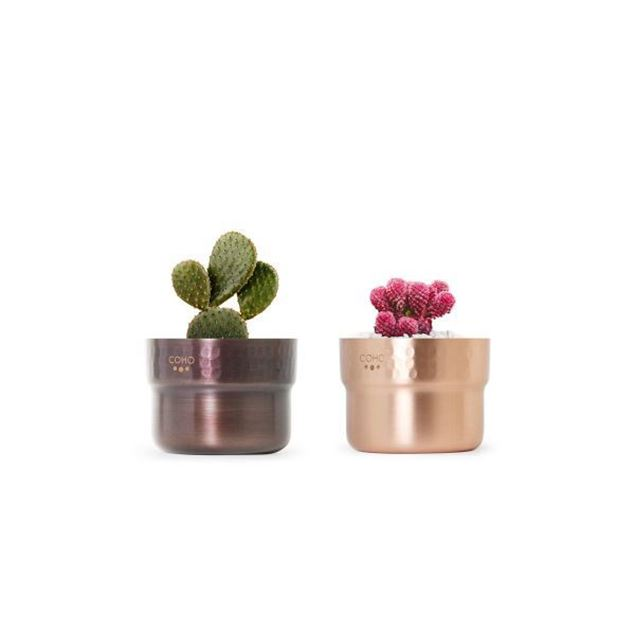 Picture of Copper Planter Set of 2